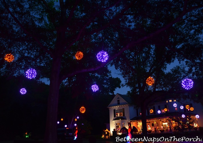 Lit Orbs in Trees for Halloween