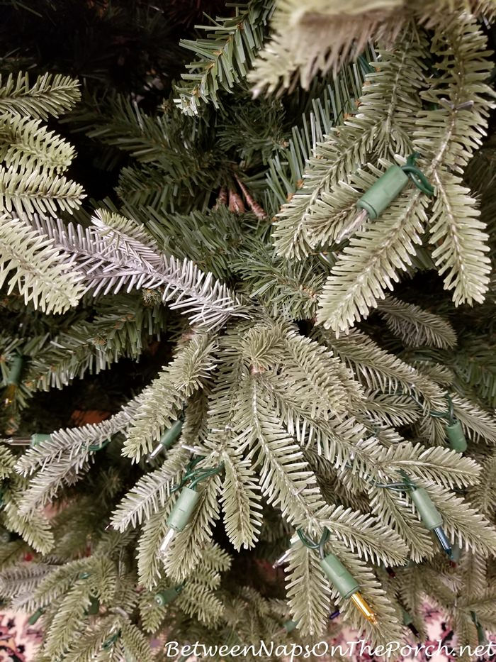 Balsam Hill Fraser Fir Has Noticeable Bald areas