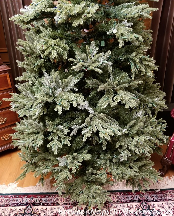 5baee2bc960 This Fraser Fir Christmas Tree Isn t What I Expected – Between Naps ...