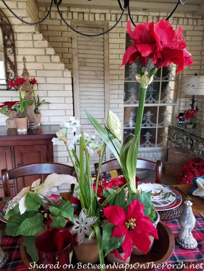 Christmas Table with a Mix of Different Plaid Dinnerware Patterns 08