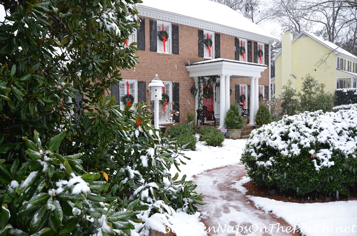 December Snow, Georgia, 12-8-17