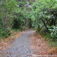 Hiking Trail, Ballynahinch Castle, Galway Ireland