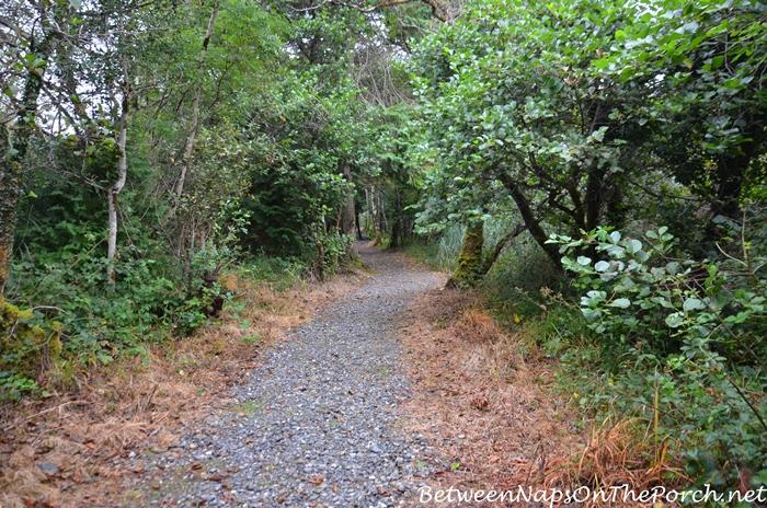 Hiking Trail, Ballynahinch Castle, Galway Ireland
