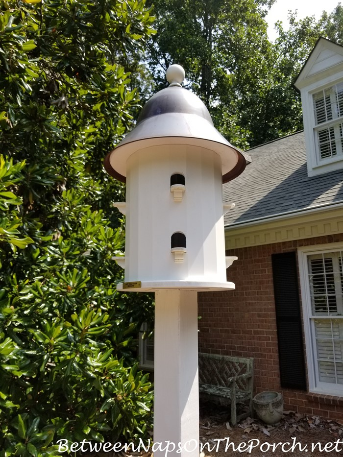 Cleaning Lazy Hill Farms Bird House at the end of Summer