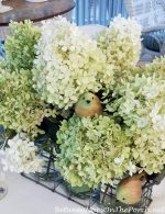 Limelight Hydrangeas, Butterflies and Birds: A Summer Table Setting On The Porch