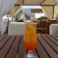 Cocktail, Egypt Tour
