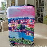 Protective Luggage Cover for Away Carry-on Bag