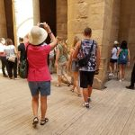 What Do Travelers Really Wear When Visiting Egypt?