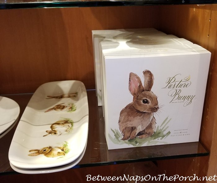 Bunny Dinnerware Plates for Spring and Easter