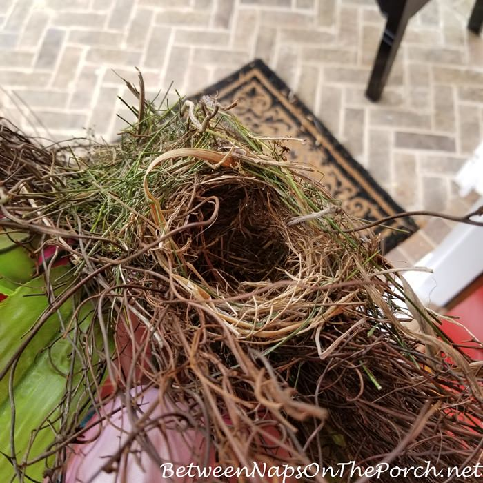 Nest in Spring Wreath