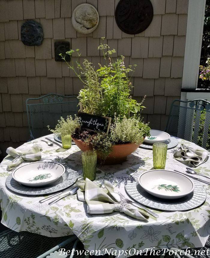 Herb Planter Centerpiece for hebr-themed table setting