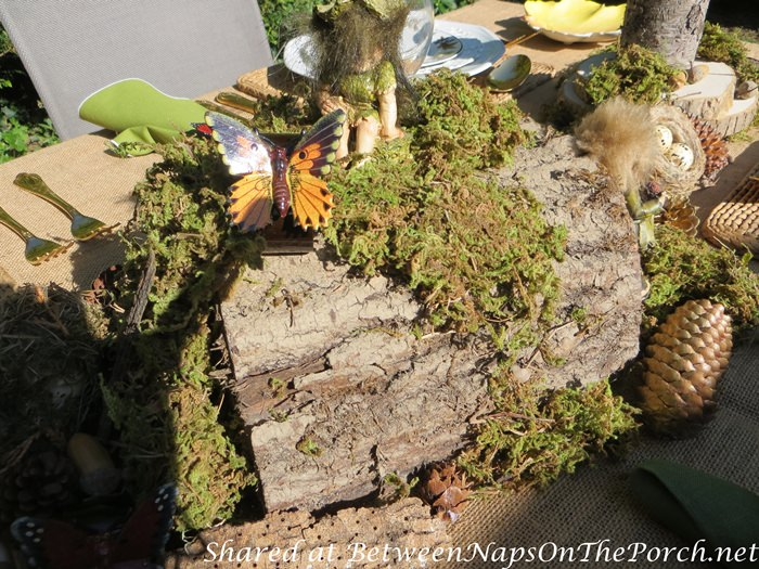 Natural Moss Centerpiece for Woodland Dinner Outdoors