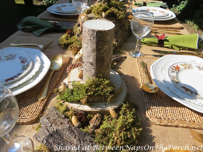 Outdoor Woodland Dinner with a Natural Moss Centerpiece and Bark Covered Candles