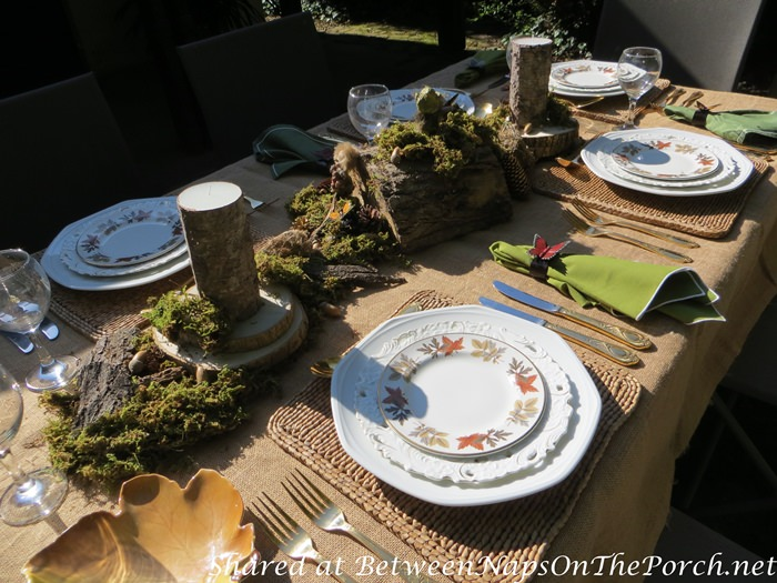 Outdoor Woodland Dinner with a Natural Moss Centerpiece