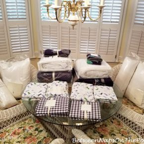 Pottery Barn Dinosaur Bedding for Twin Beds