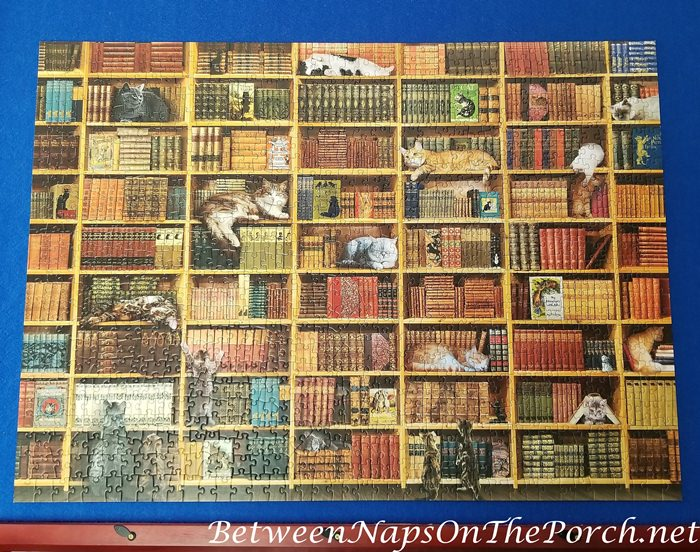 The Cat Library Puzzle, Cobble Hill