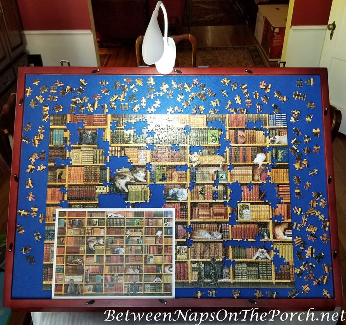 The Cat Library Puzzle on Puzzle Board
