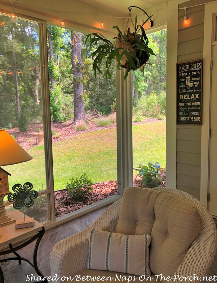 Decorate a Screened Porch, Plants for the Porch
