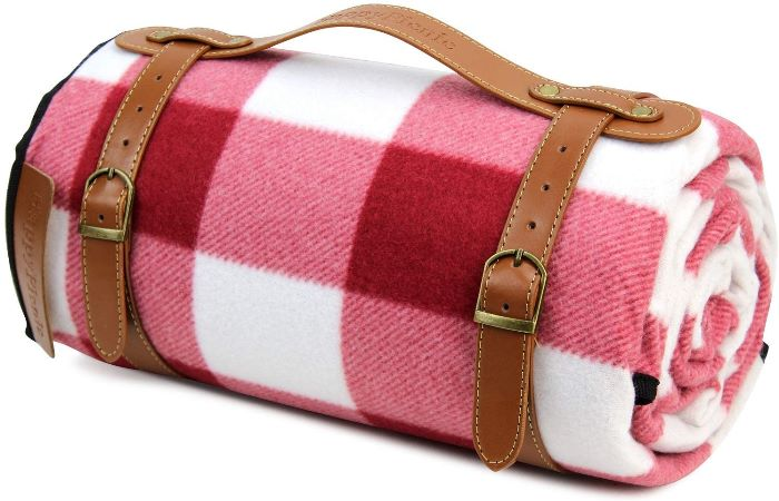 Red and white check picnic blanket