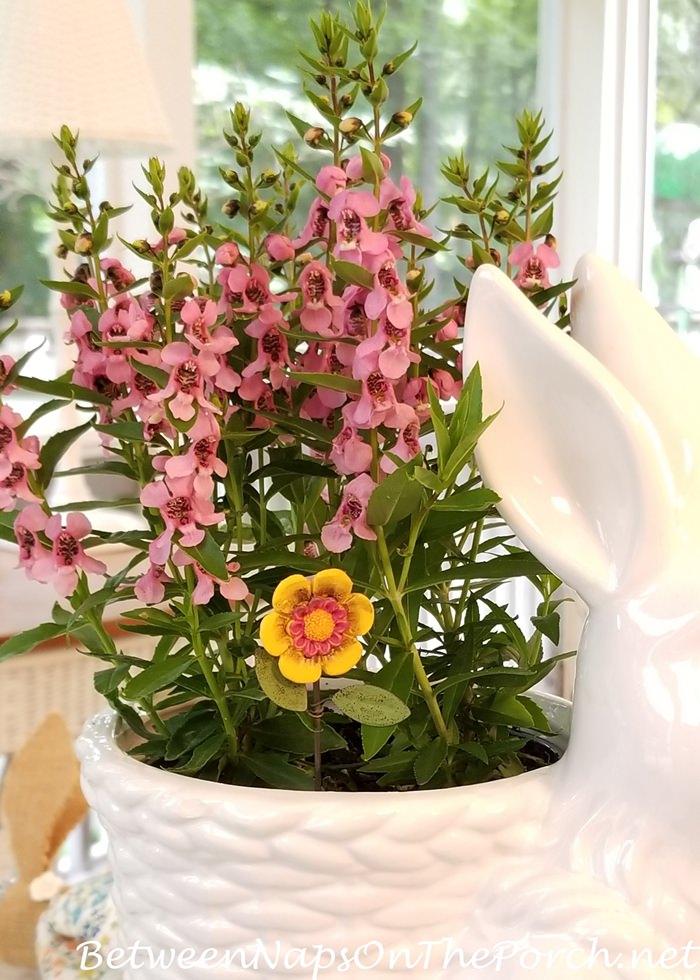 Flower Decoration for Planter