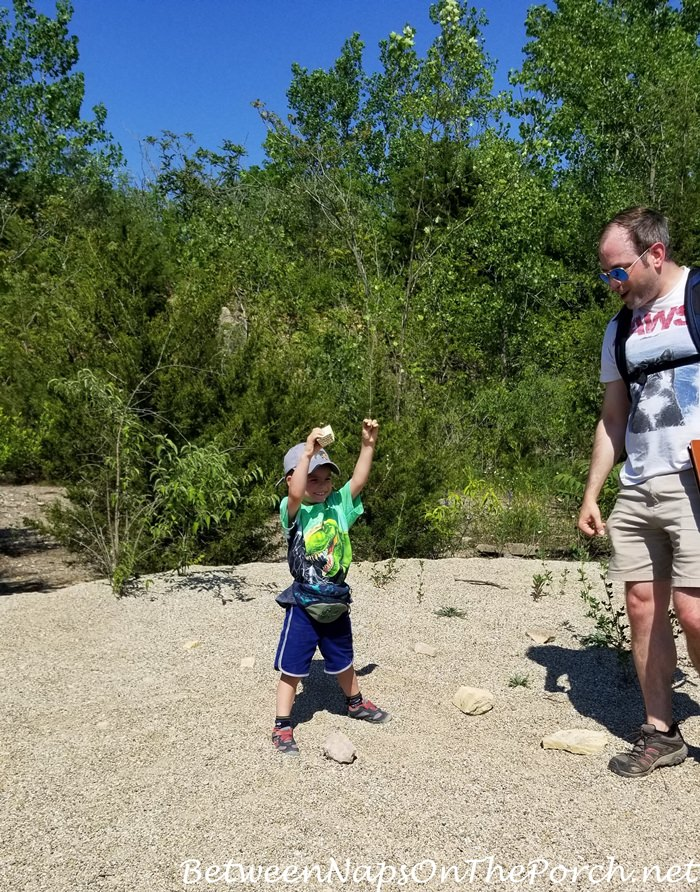 Summer Activity for Kids, Fossil Hunt