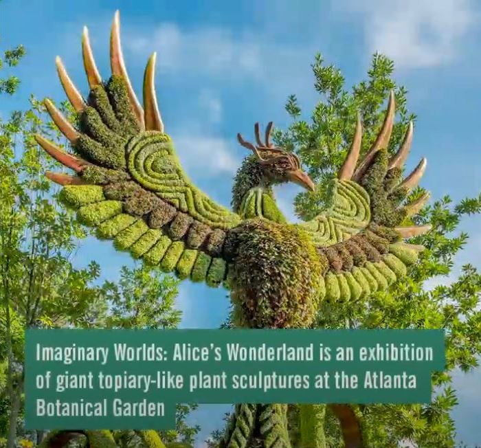 Alice's Wonderland, Atlanta Botanical Garden, Phoenix