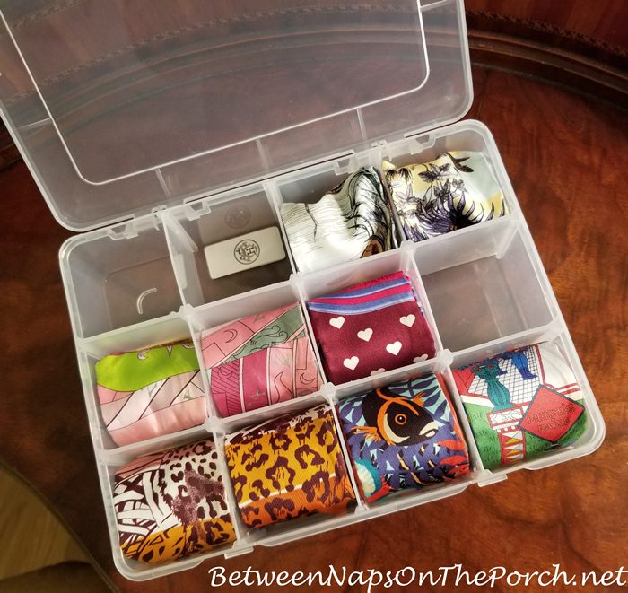Storage for Hermes Twilly and Dior Mitzah Scarf