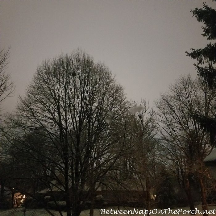 Snowy sky at midnight, looks like daytime