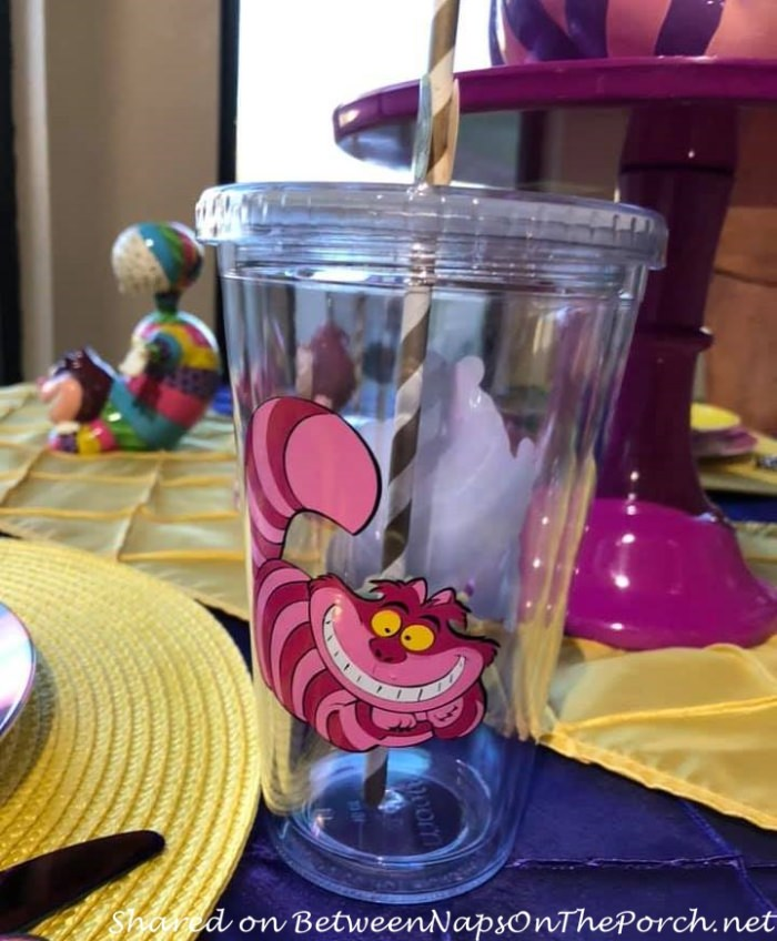 Cheshire Cat Glasses, Non Breakable for Kids
