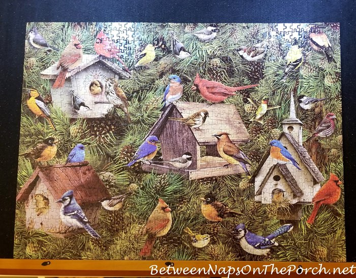 Puzzle for Bird Lovers
