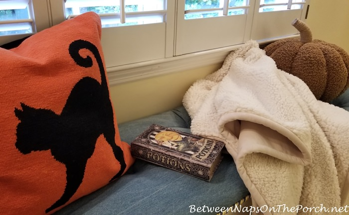 Black Cat Pillow, Halloween