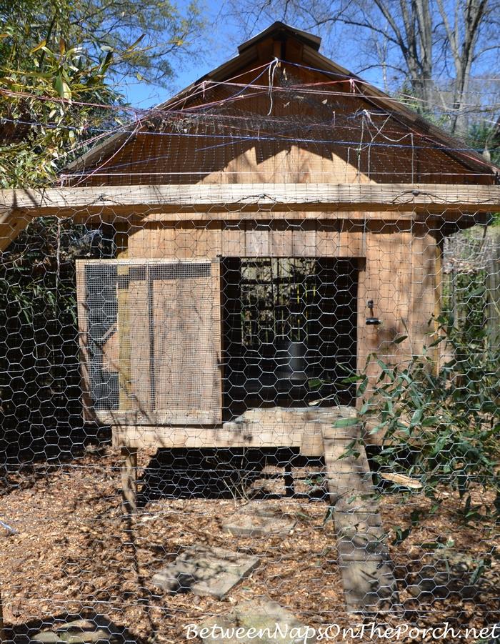 Chicken Coop on Urban Coop Tour