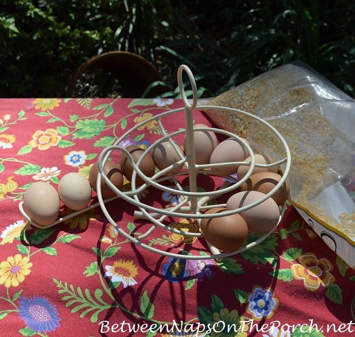 Egg Skelter Rack