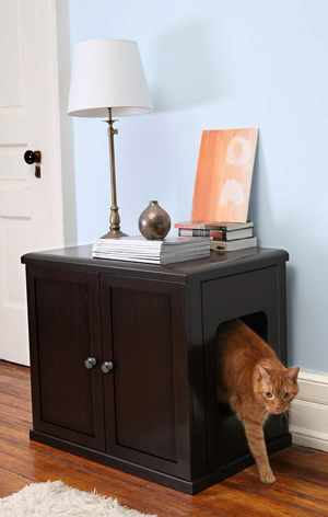 Litter Box Solutions Between Naps On, Litter Box In Unfinished Basement
