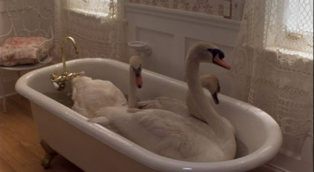 Doves in tub in the Movie, Father of the Bride