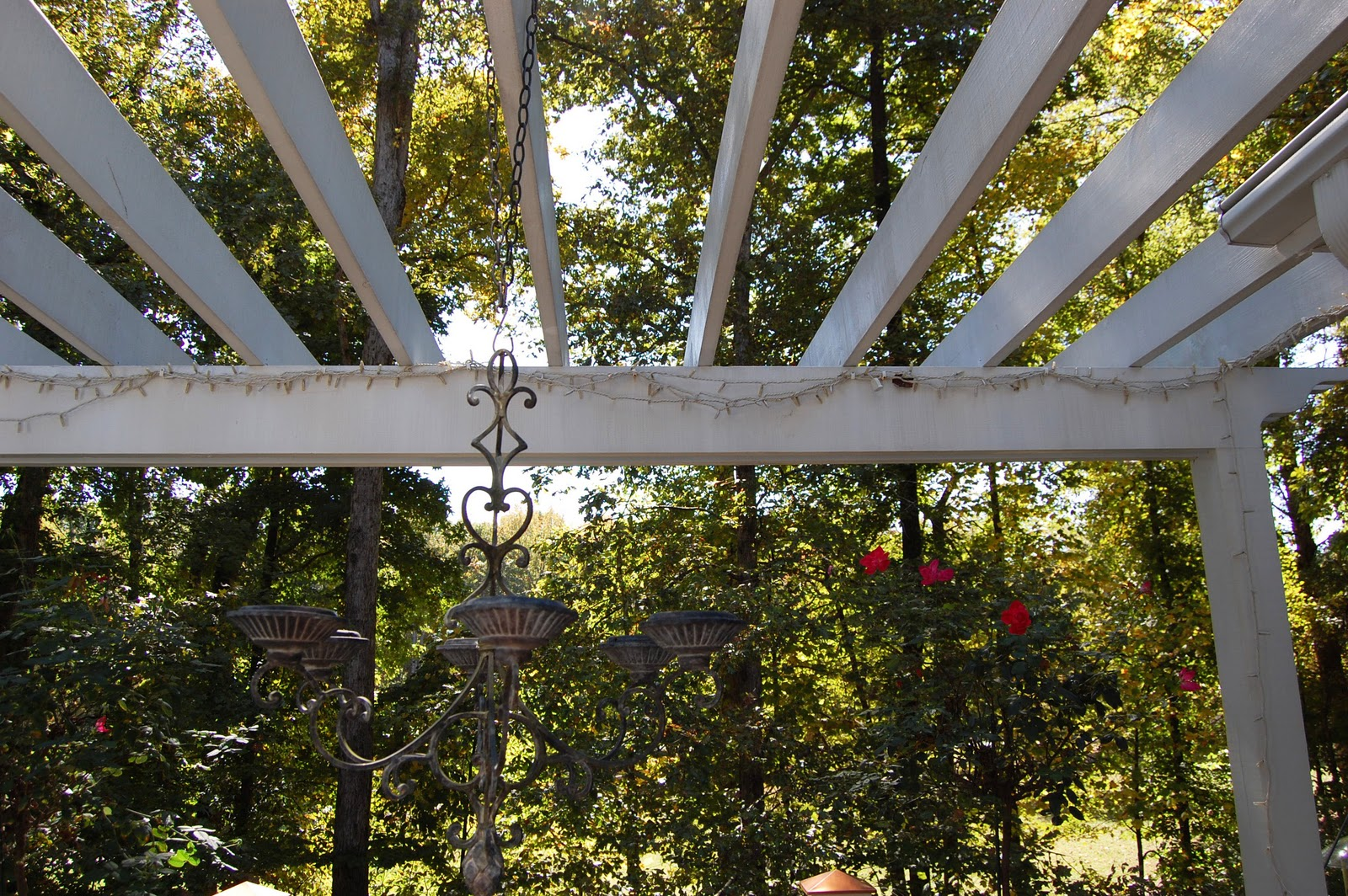 Repairing String Lights on the Pergola