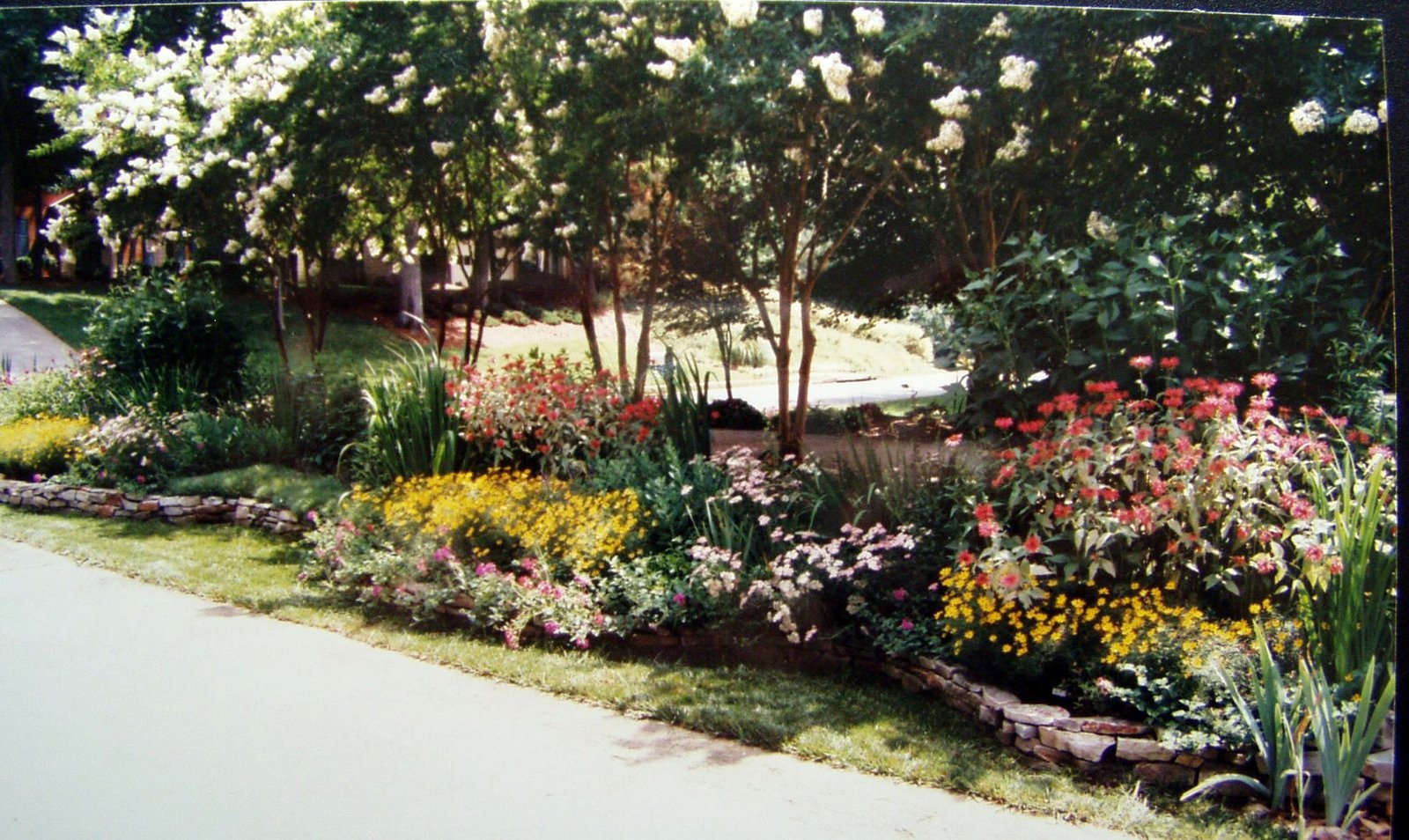 Designing and creating a sun loving perennial flower bed for Creating a flower bed