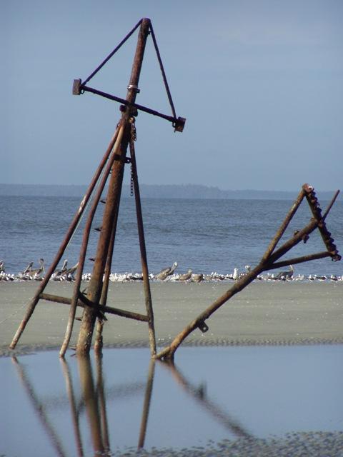 Shrimp Boat, Mary Ann Shipwrecked on Jekyll Island